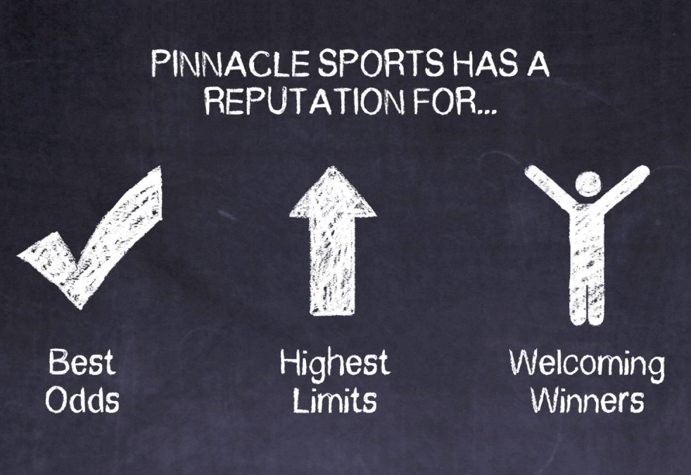 Pinnacle Sports: Multiple Language Explainer Videos